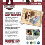Wolf's Lair K9 Vacation Dog Tabloid Ad