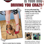 Wolf's Lair K9 Driving Crazy Ad